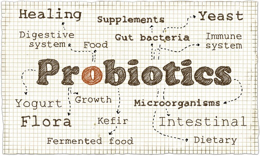 Probiotic Manufacturing Can Expand Your Product Lines