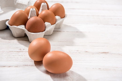 Get Egg-Cited About Egg Albumen Protein Powder
