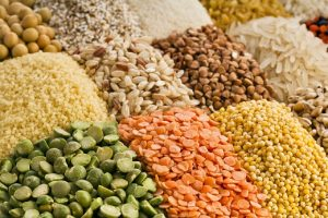 Plant-Based Protein Powders Growing More Popular