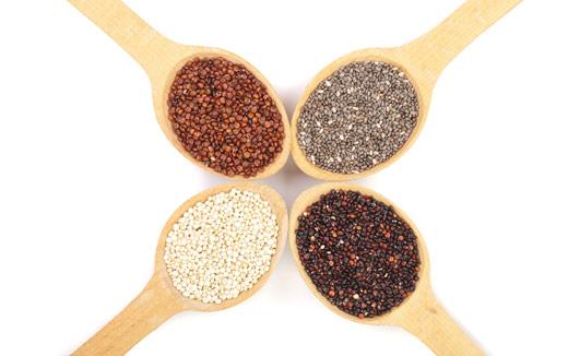 3 Alternative Protein Sources